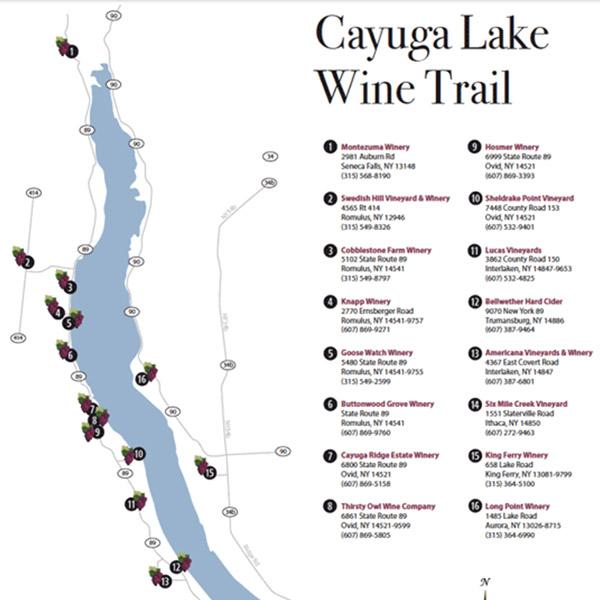 Wine Tour Seneca Lake Limo